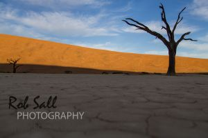 Deadvlei - Namib Nakluft National Park